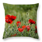 Red Poppies 3 Throw Pillow