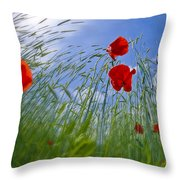 Red Poppies And Blue Sky Throw Pillow