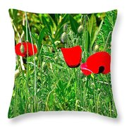 Red Poppies Near Meryem Ana Evi-cottage Believed To Be Mary's Last Home-turkey Throw Pillow