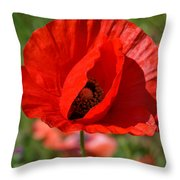 Red Poppy 2 Throw Pillow