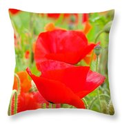 Red Poppy Flowers Art Prints Floral Throw Pillow