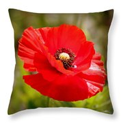 Red Poppy Power Throw Pillow