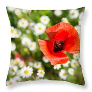 Red Poppy With Daisies On Flower Meadow Throw Pillow