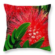 Red Powder Puff Throw Pillow