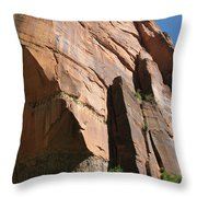 Red Red Rock Throw Pillow