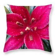 Red Refreshed Lily Throw Pillow