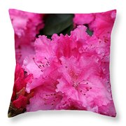 Red Rhododendrons Throw Pillow