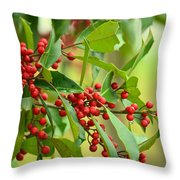 Red Ripe Berries Throw Pillow