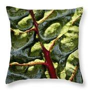 Red River Through Green Hills Throw Pillow