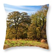Red River Valley Throw Pillow