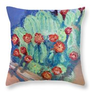 Red Rock Beauty Throw Pillow