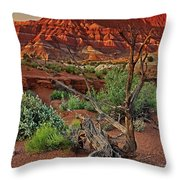 Red Rock Butte And Juniper Snag Paria Canyon Utah Throw Pillow