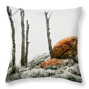 Red Rock Frost - Green Mountain - Wyoming Throw Pillow