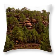 Red Rock Green Forest No3 Throw Pillow
