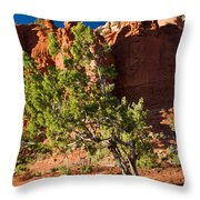 Red Rocks And Tree 1 Throw Pillow