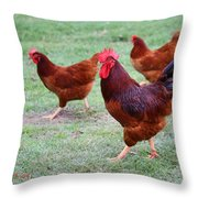 Red Rooster And Hens Throw Pillow