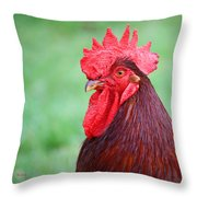 Red Rooster Portrait Throw Pillow