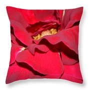 Crimson Blush 1.2 Throw Pillow