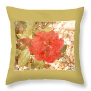 Red Rose At Noon Throw Pillow