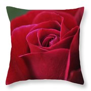 Red Rose Close 1 Throw Pillow by Roger Snyder