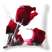 Red Rose Color Block 2 Throw Pillow