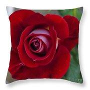 Red Rose Flower Throw Pillow