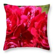 Red Rose Garden Art Prints Roses Throw Pillow