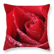 Red Rose Macro With Waterdrops Throw Pillow