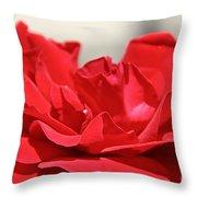 Red Rose Red Rose Throw Pillow