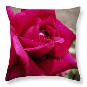 Red Rose Up Close Throw Pillow