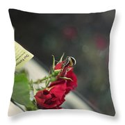 Red Roses And Visitor Throw Pillow