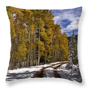 Red Sandstone Road In October Throw Pillow
