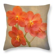 Red Scarlet Orchid On Grunge Throw Pillow by Rudy Umans
