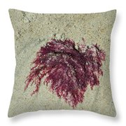 Red Seaweed Throw Pillow
