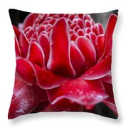 Red Seduction Throw Pillow