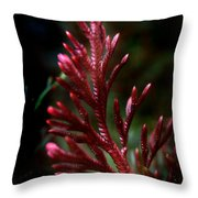 Red Selaginella Throw Pillow