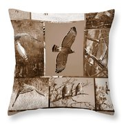 Red-shouldered Hawk Poster - Sepia Throw Pillow