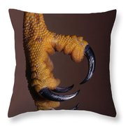 Red-shouldered Hawk Talons Throw Pillow