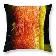 Red Silk Throw Pillow