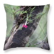 Red Simplicity Throw Pillow