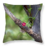 Red Simplicity V3 Throw Pillow