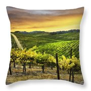 Red Soles Sunrise Throw Pillow
