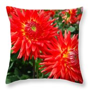 Red Spikey Flowers Throw Pillow