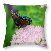 Red Spotted Admiral On Sedum - Vertical Throw Pillow