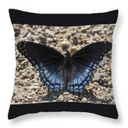 Red Spotted Purple Butterfly Throw Pillow