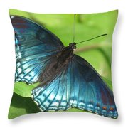 Red-spotted Purple Throw Pillow
