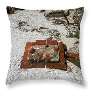 Red Square Throw Pillow