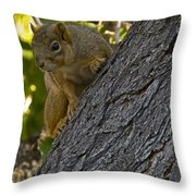 Red Squirrel    #1736 Throw Pillow