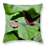 Red Stripe Throw Pillow