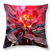 Red Succulent Plant Throw Pillow